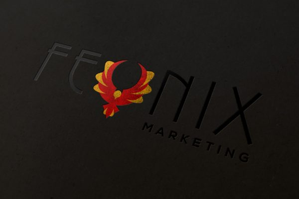 Feonix-Brand-Design-by-Stephanie-Vachon11-LR